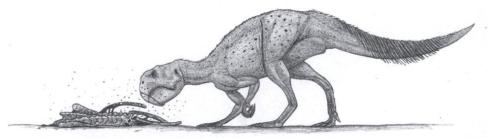 Psittacosaurus sp with 'feathers' on the tail